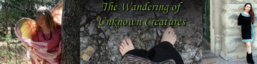 The  Wandering of Unknown Creatures