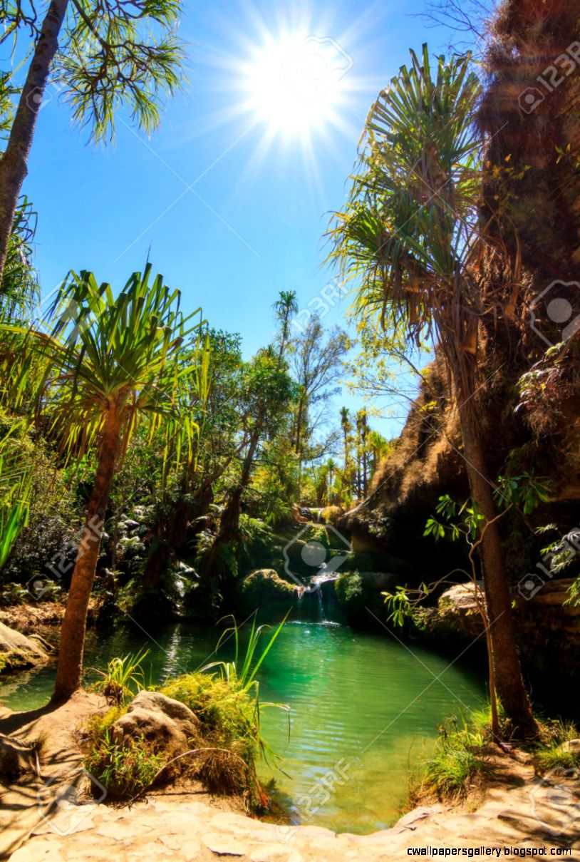 Beautiful Oasis La Piscine Naturelle In Isalo National Park