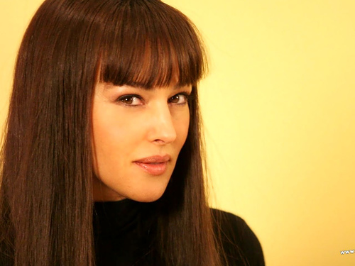 Monica Hair Styles: Fashion: New Monica Bellucci Hairstyle