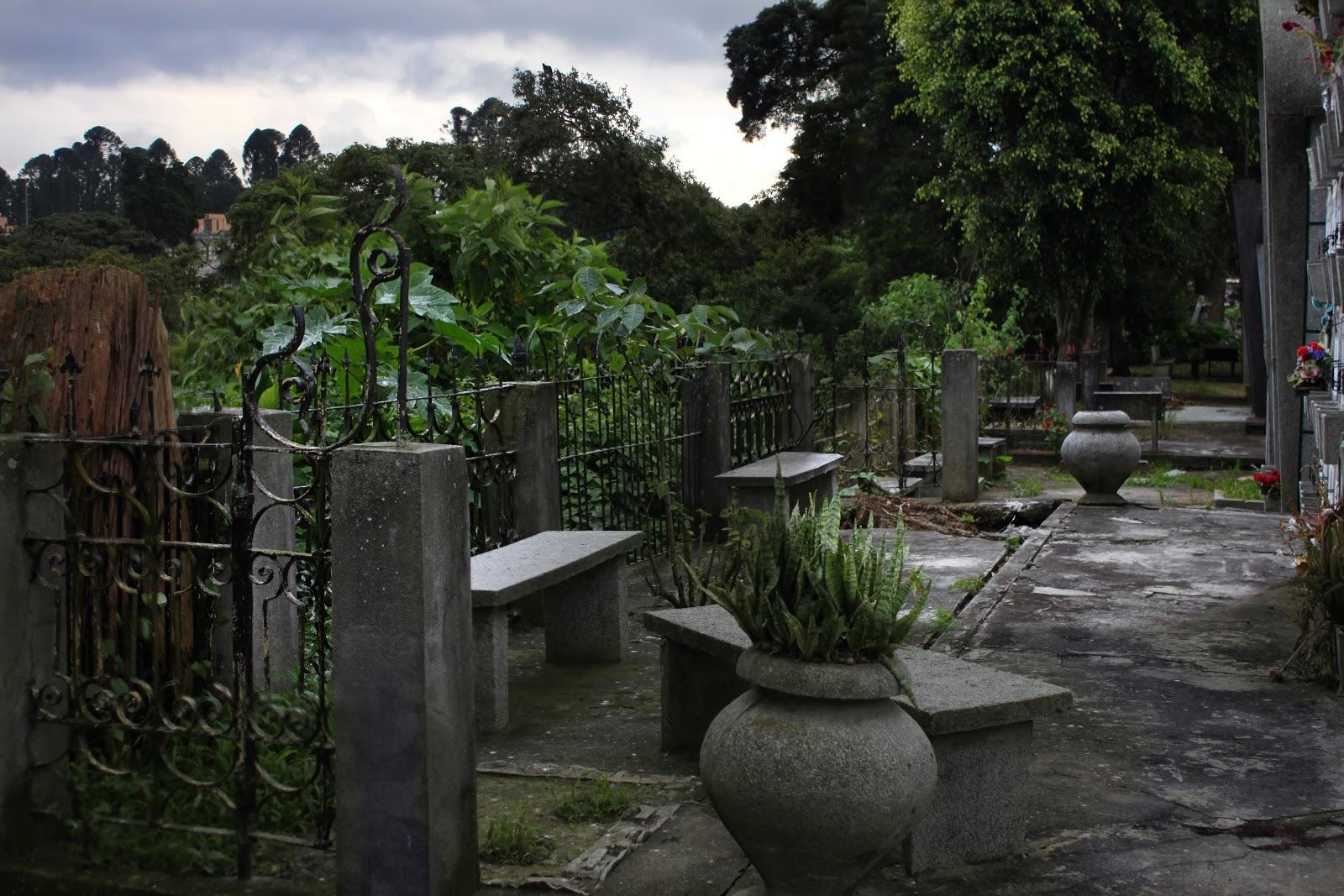 Photo ranch garden in general cemetery guatemala city for Cementerio jardin