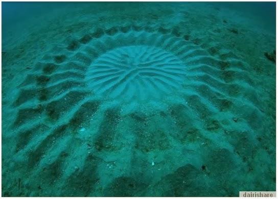 Misteri Formasi Lambang Aneh Dasar Laut Akhirnya Terjawab