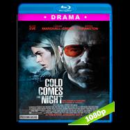 Frío Como La Noche (2013) Full HD 1080p Audio Dual Latino-Ingles