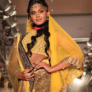 Karthika Rwalk at Cifw 2012 Photo Gallery