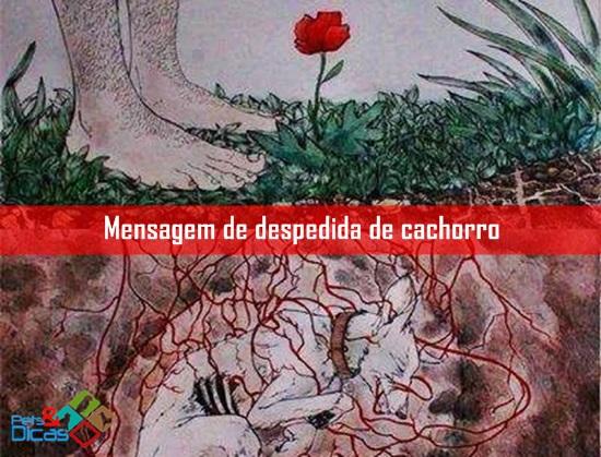 Cão enterrado com flor brotando no solo