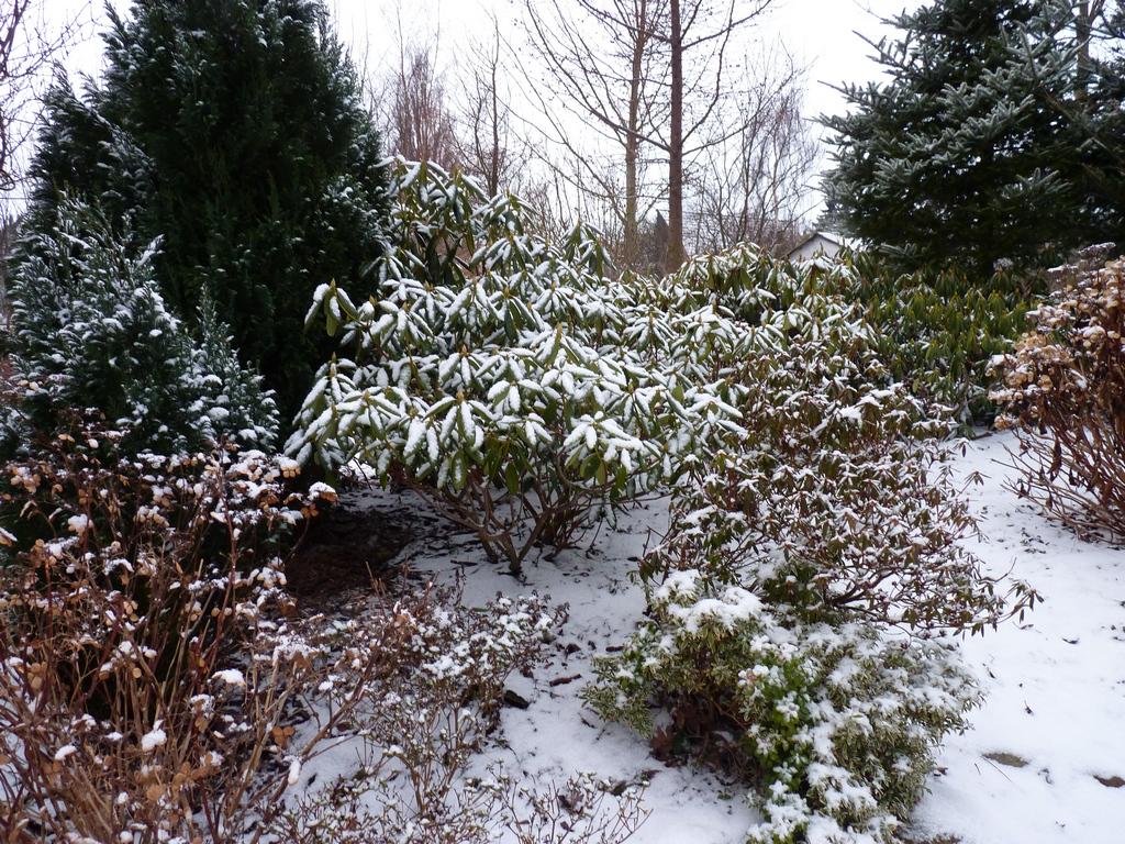 frost og kulde kolde dage sang