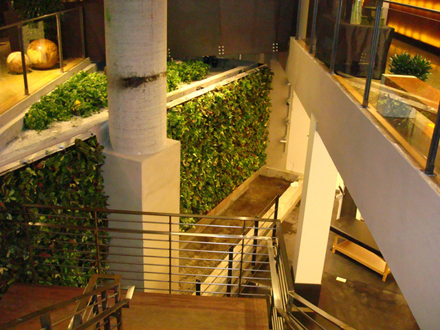 21 fotos de jardins verticais incríveis