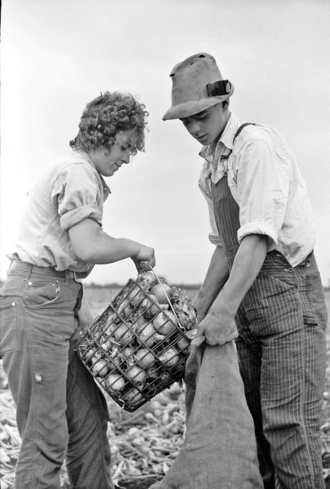 Vintage Photos: Arthur Rothsteintreasure county