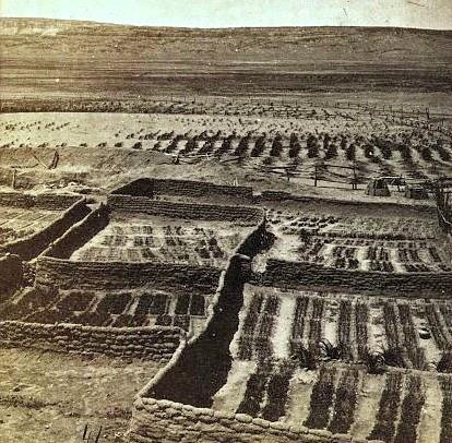Zuni history
