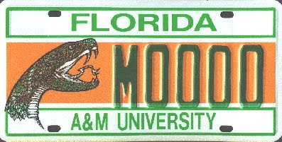 Rattler Nation License Plate Sales Generate 519 550 For Famu