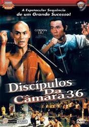 Baixar Filme Discípulos da Camara 36 (Dublado) Online Gratis