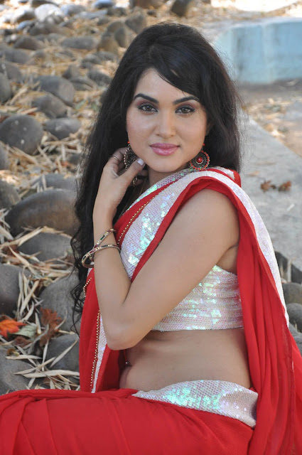 Actress Kavya Singh Red Saree Photos