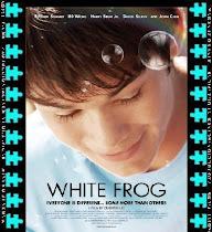 White Frog (Rana blanca)
