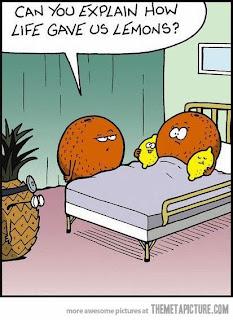 can-you-explain-how-life-gave-us-lemons-cartoon