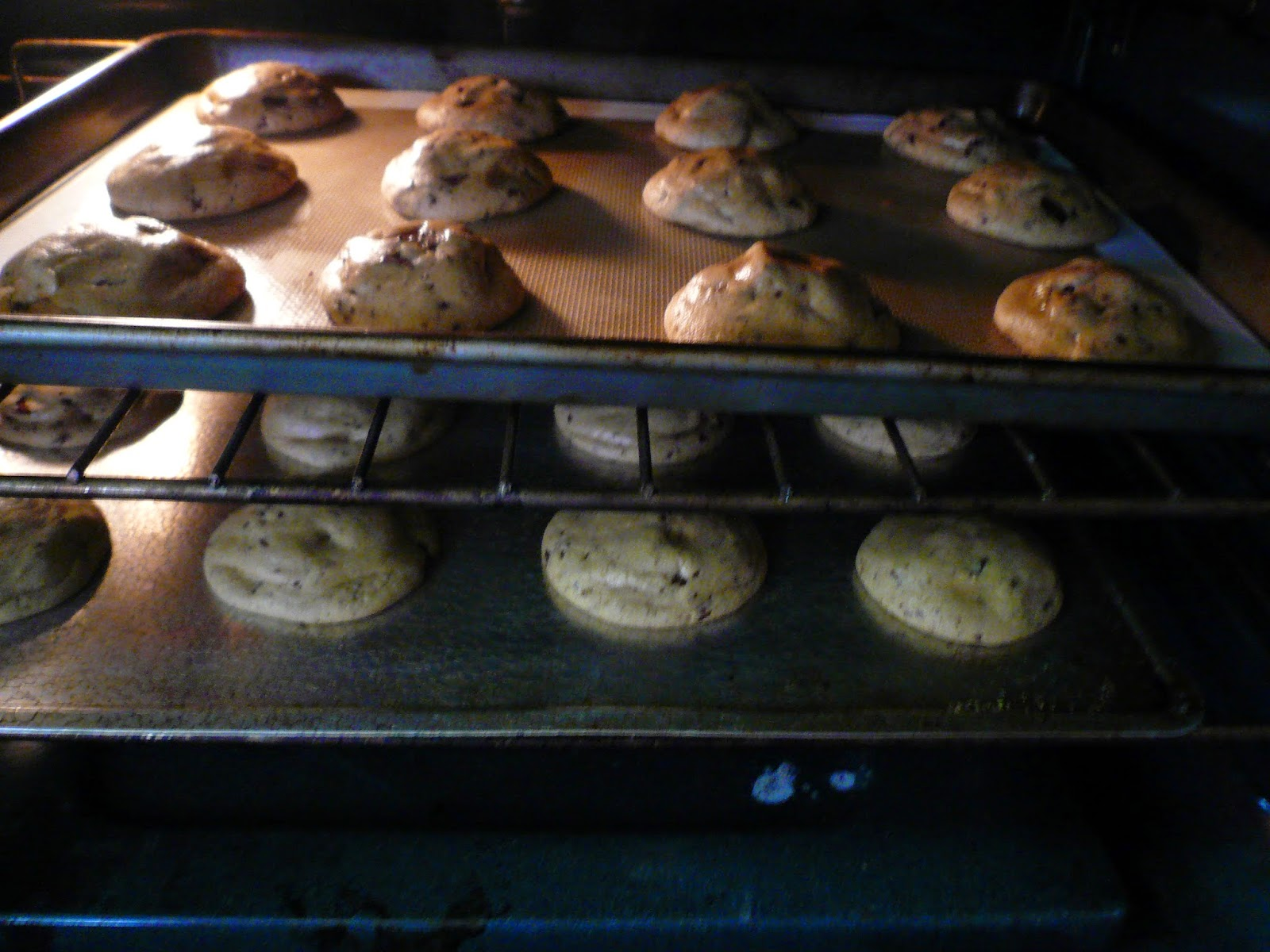 Making Cookies Step 19, by Rex Roof | Chocolate Chip Cookies In The Oven