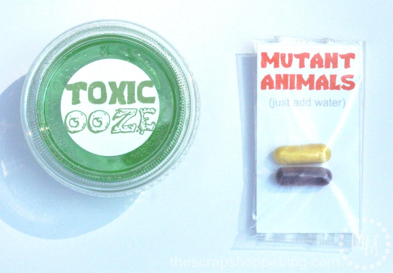 Teenage Mutant Ninja Turtle TMNT Birthday Party