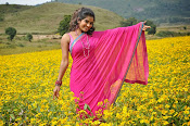 Shruti Photos from Ak Rao Pk Rao Movie-thumbnail-2