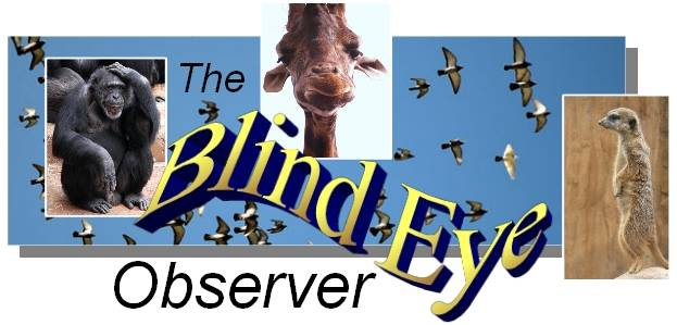The Blind Eye Observer