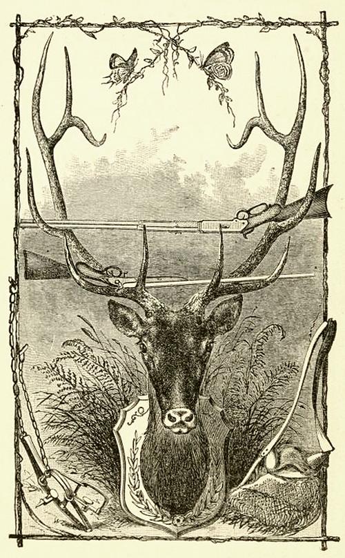 Mounted deer head rifle rack