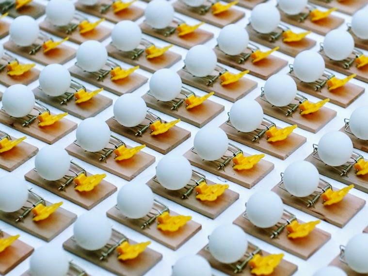 Mira como miles de trampas de ratón y pelotas de ping pong desatan una espectacular reacción en cadena