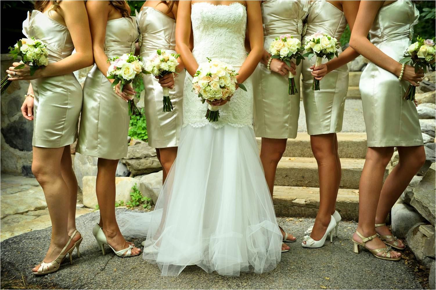 The dress garden utah - The First White Wedding Dress
