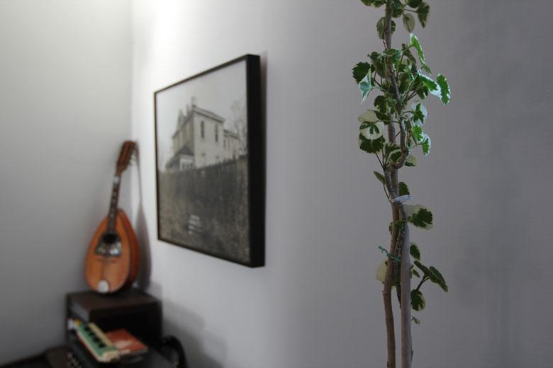 wardens lisa diquinzio michael leblanc toronto apartment interior plant photograph house ukule