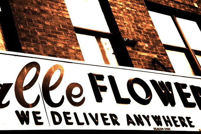 A cool, old flower shop sign hanging over brick in Chicago.