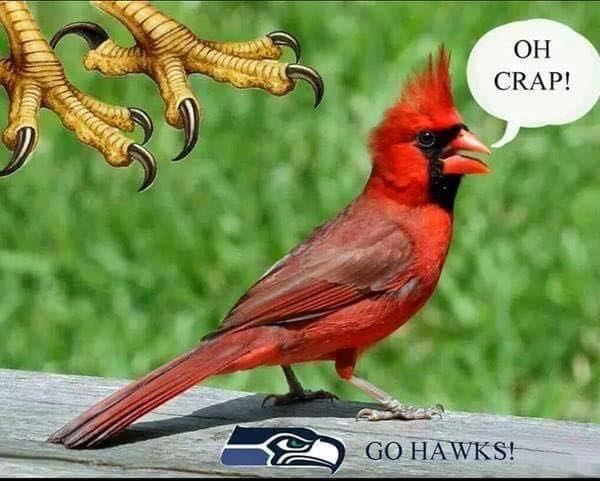 ho crap! - Go hawks!