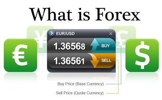 Millionaire retail forex traders