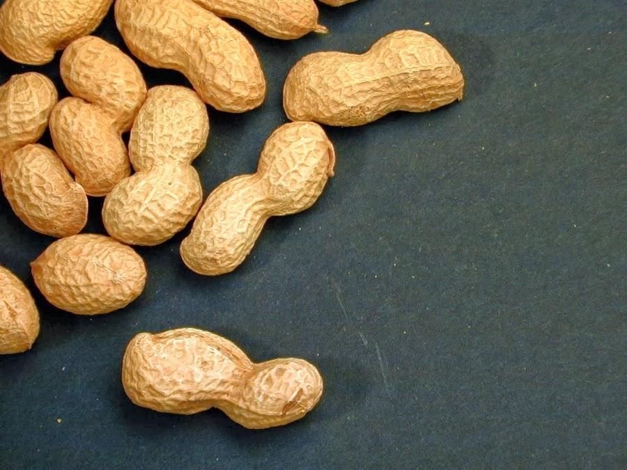 Manfaat dan Khasiat Kacang Tanah