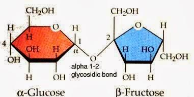 An Example Of A Sucrose Molecule