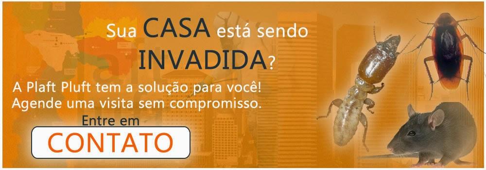Sua casa está sendo invadida por pragas urbanas, Pragas urbanas, casa, Dedetizadora, Dedetizadora 24 Horas, Dedetizadora Plaft Pluft, Dedetização São Paulo