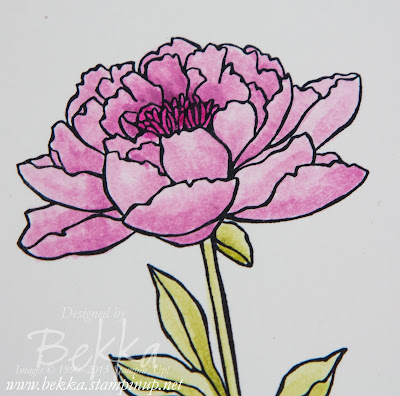 One Card Three Ways - A Comparison of Colouring With Blender Pens and Aqua Painters  - Check It Out here