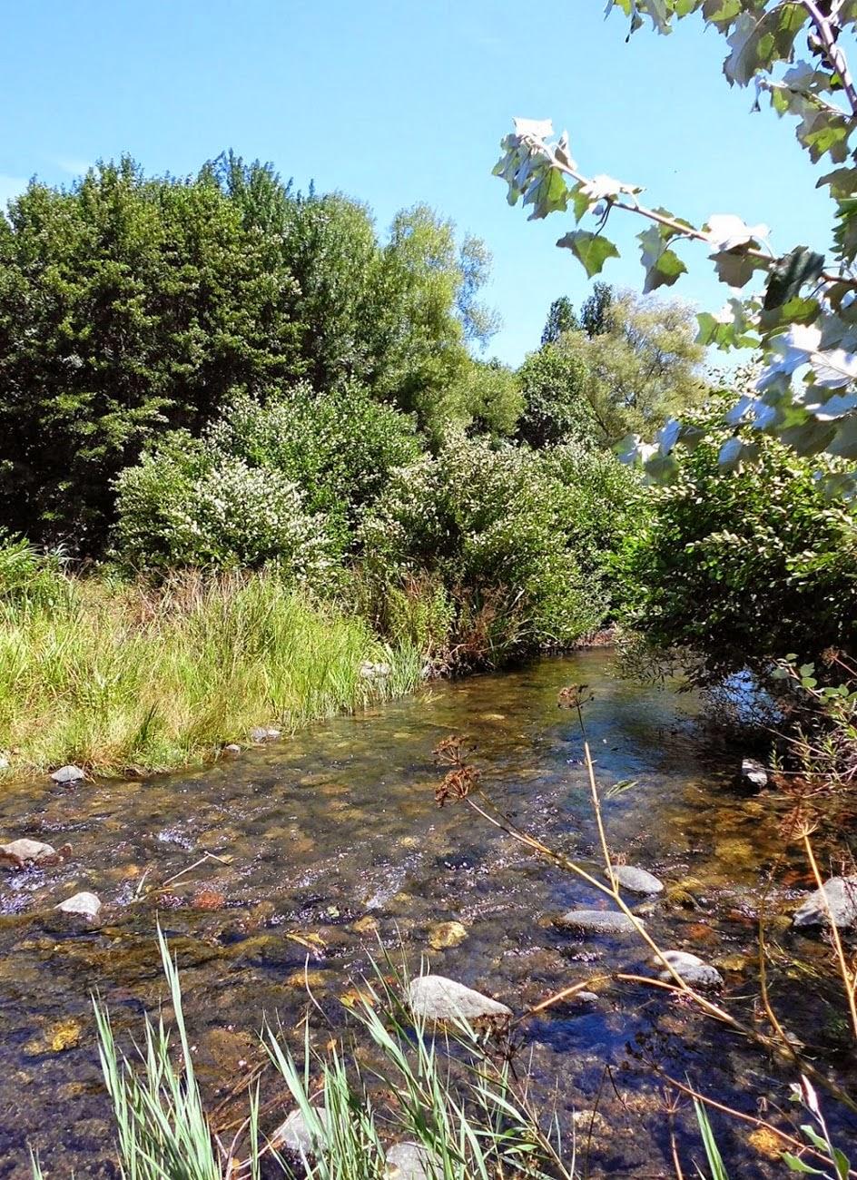 Flumendosa river