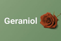 Understanding Terpenes: Geraniol