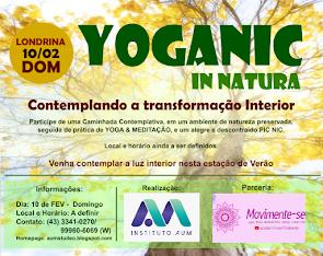 YOGANIC IN NATURA : YOGA + PICNIC