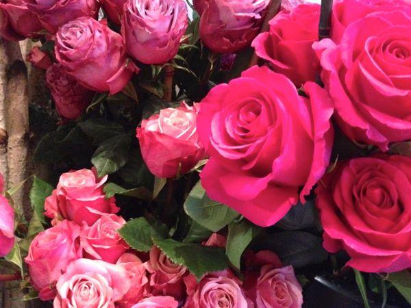 NowThisLife.com - Park Slope roses