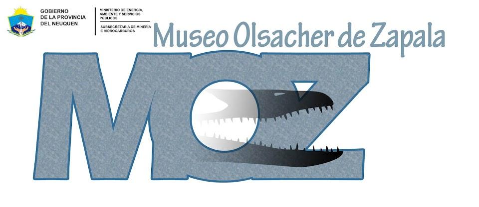 "Museo de Ciencias Naturales ""Prof. Juan Olsacher"""