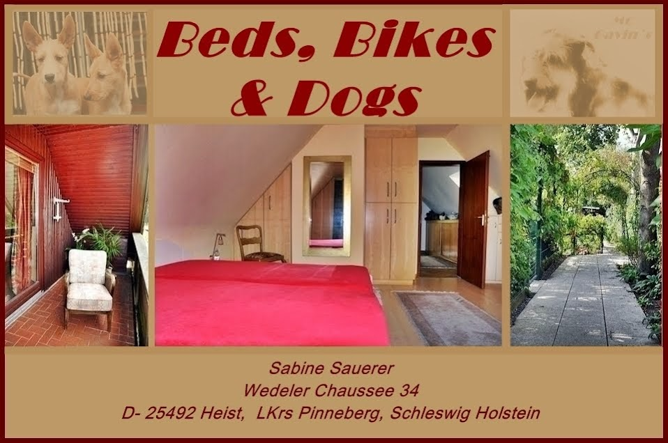 Beds, Bikes and Dogs - Sabine Sauerer