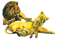 Contohnya,sapi, kucing, kambing, dan singa