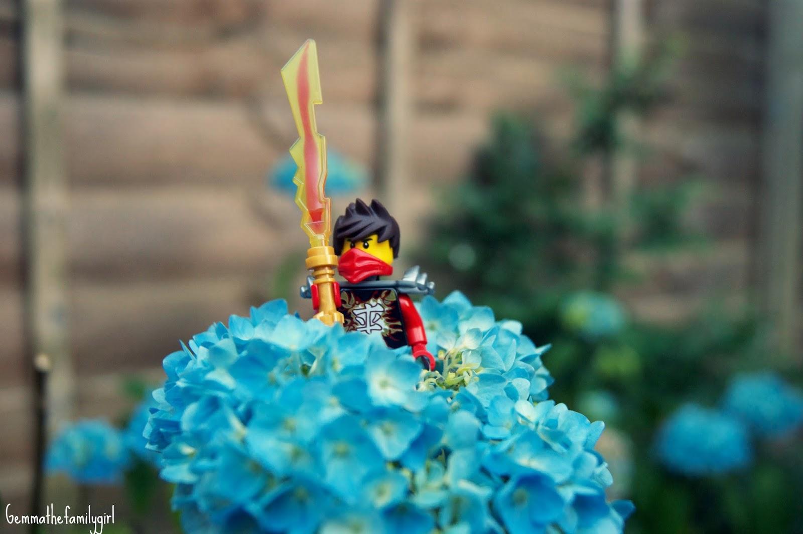 lego, mini figure, ninja, ninjago, parent, blogger, photography