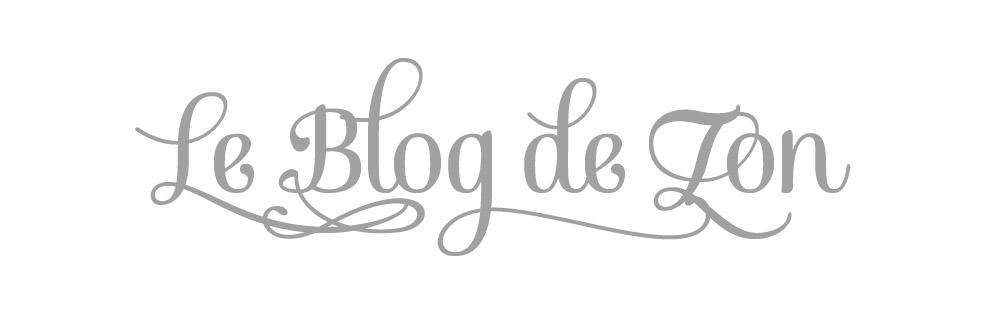 le blog de zon