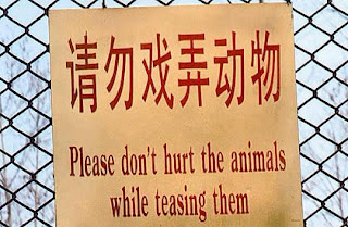engrish funny sign don't hurt animals