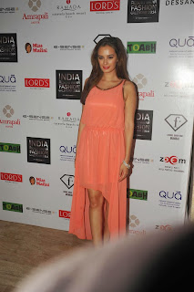 Evelyn Sharma in Gorgeous Half Gown at India Resort Fashion Week Bash In F Bar, Mumbai 3.jpg