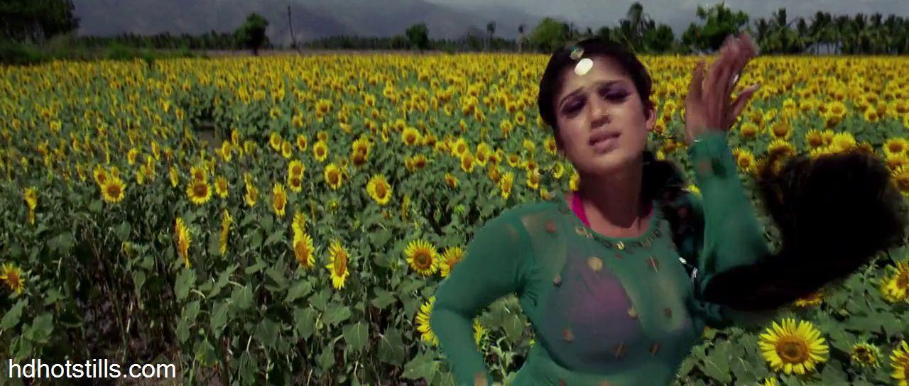 Nayanthara in villu songs