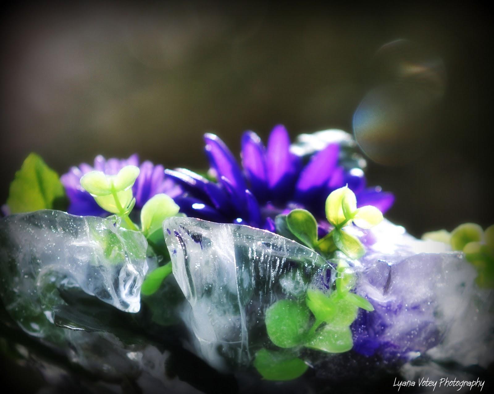 http://3.bp.blogspot.com/-Iyv3Fb6a2nI/TZf1Yo6ptCI/AAAAAAAAATY/u3boj_5kgg8/s1600/floral-ice-sculpture.jpg