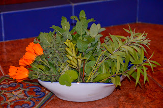 Hierbas aromáticas de la huerta de Ximena y Gustavo. Foto: Jorge Bela