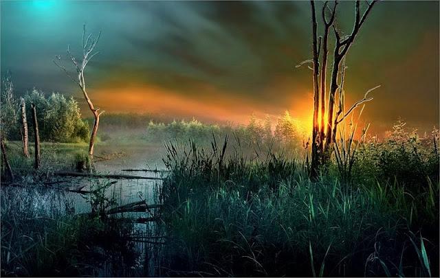 фото природы