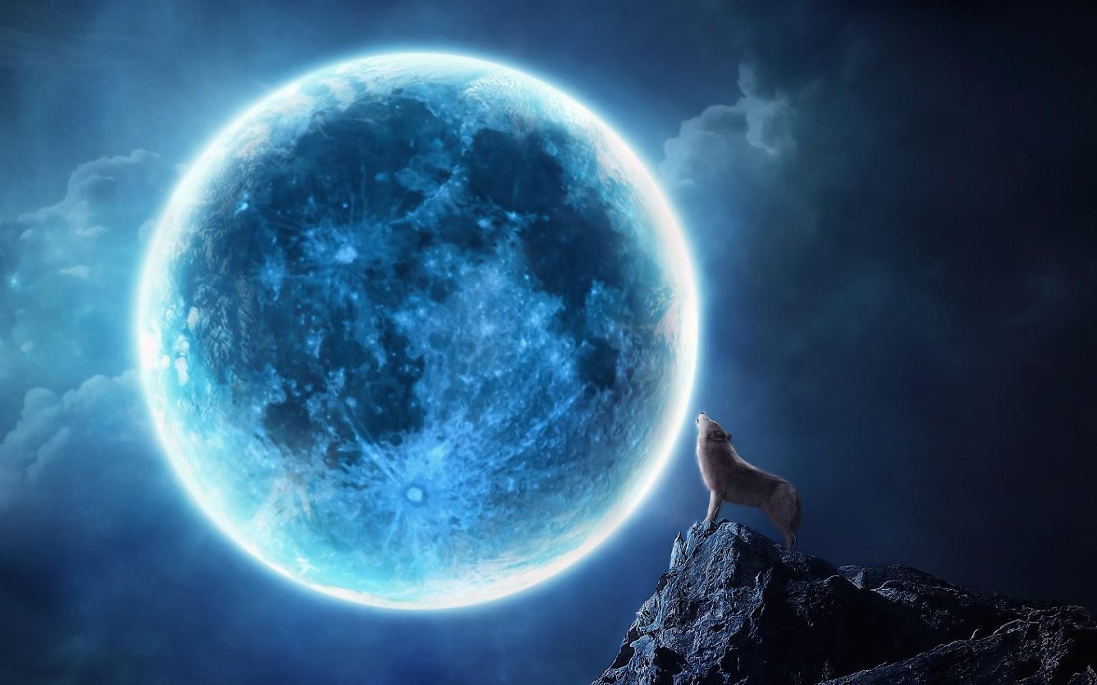 http://3.bp.blogspot.com/-IzOOjXXHjG8/USu11AS_nDI/AAAAAAAAN1E/BYkHaRFIlg0/s1600/wallpaper-van-een-huilende-wolf-bij-volle-maan.jpg