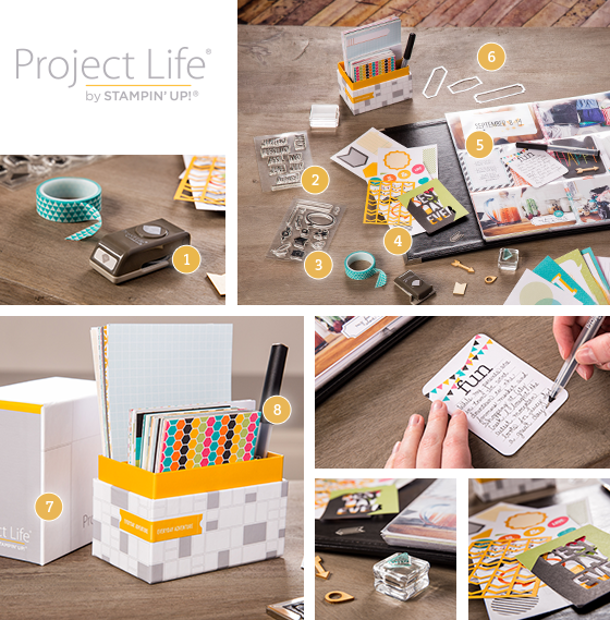Project Life!