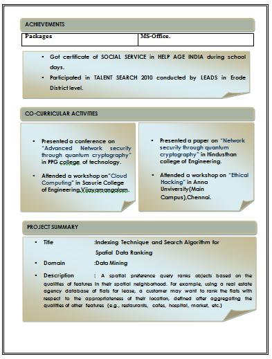 beautiful professional resume format resume format for it professional - Format Of A Professional Resume